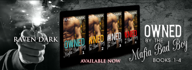Owned 1- 4 Book FB Banner.png